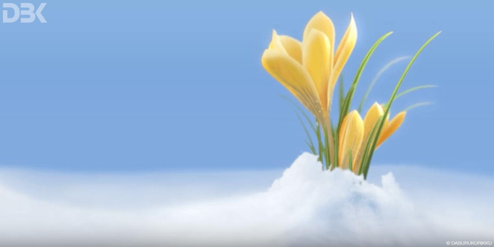 modellazione 3D animazione fiore crocus - Daburukurikku - Ticino