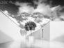 visualizzazione architettonica progetto villa